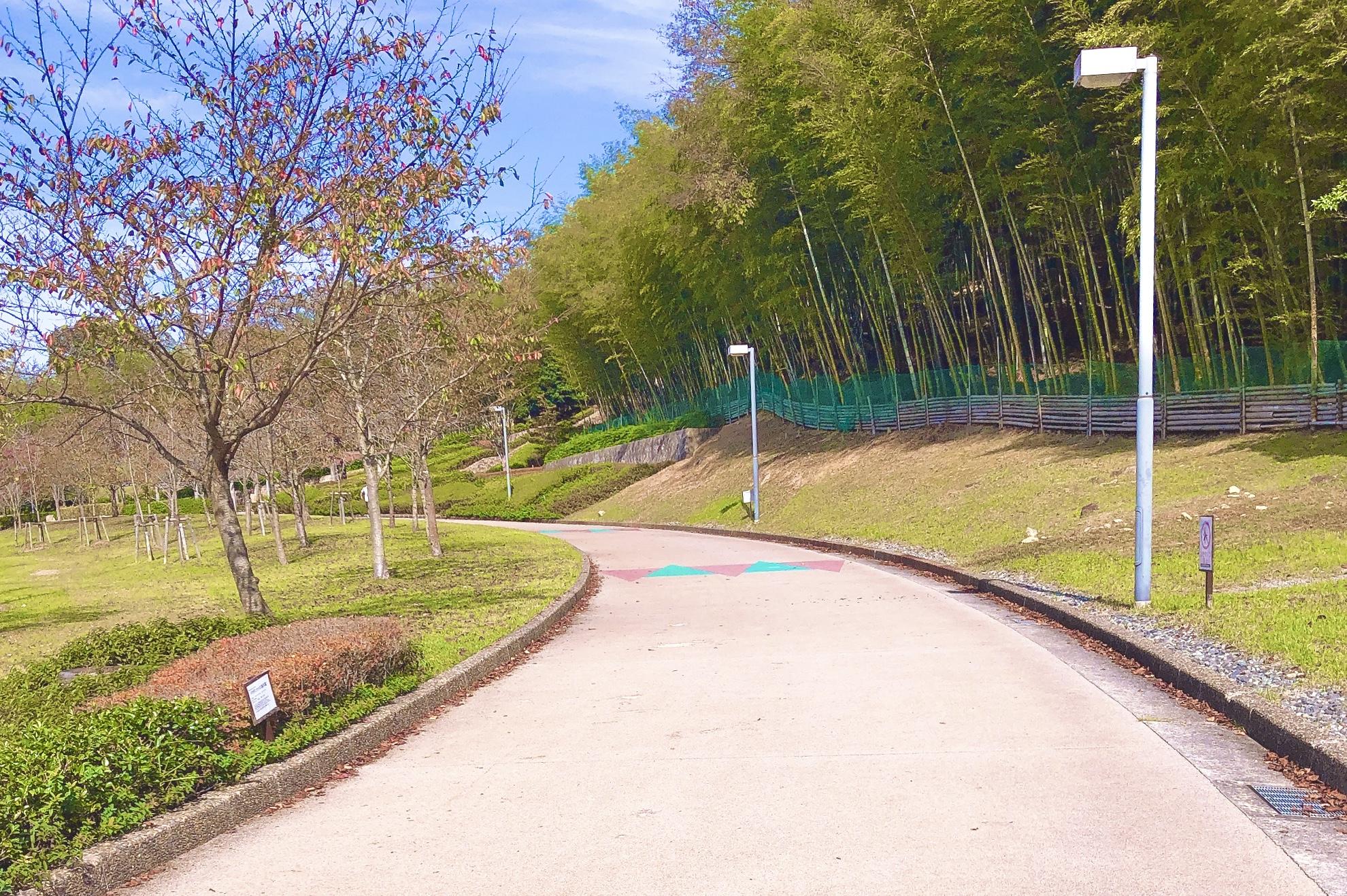 桜山公園ウォーキング