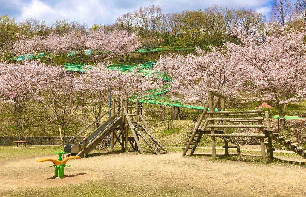 丸山総合公園遊具1