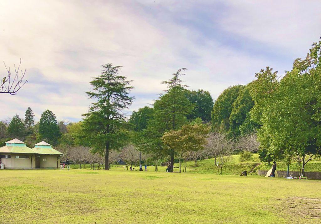 丸山総合公園広場