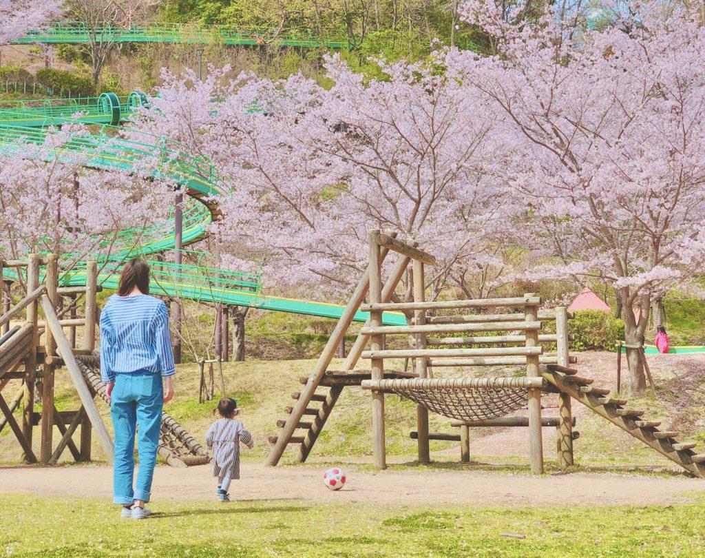 丸山総合公園遊具2