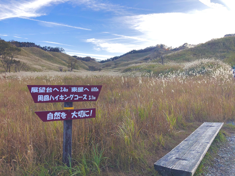 砥峰高原風景2
