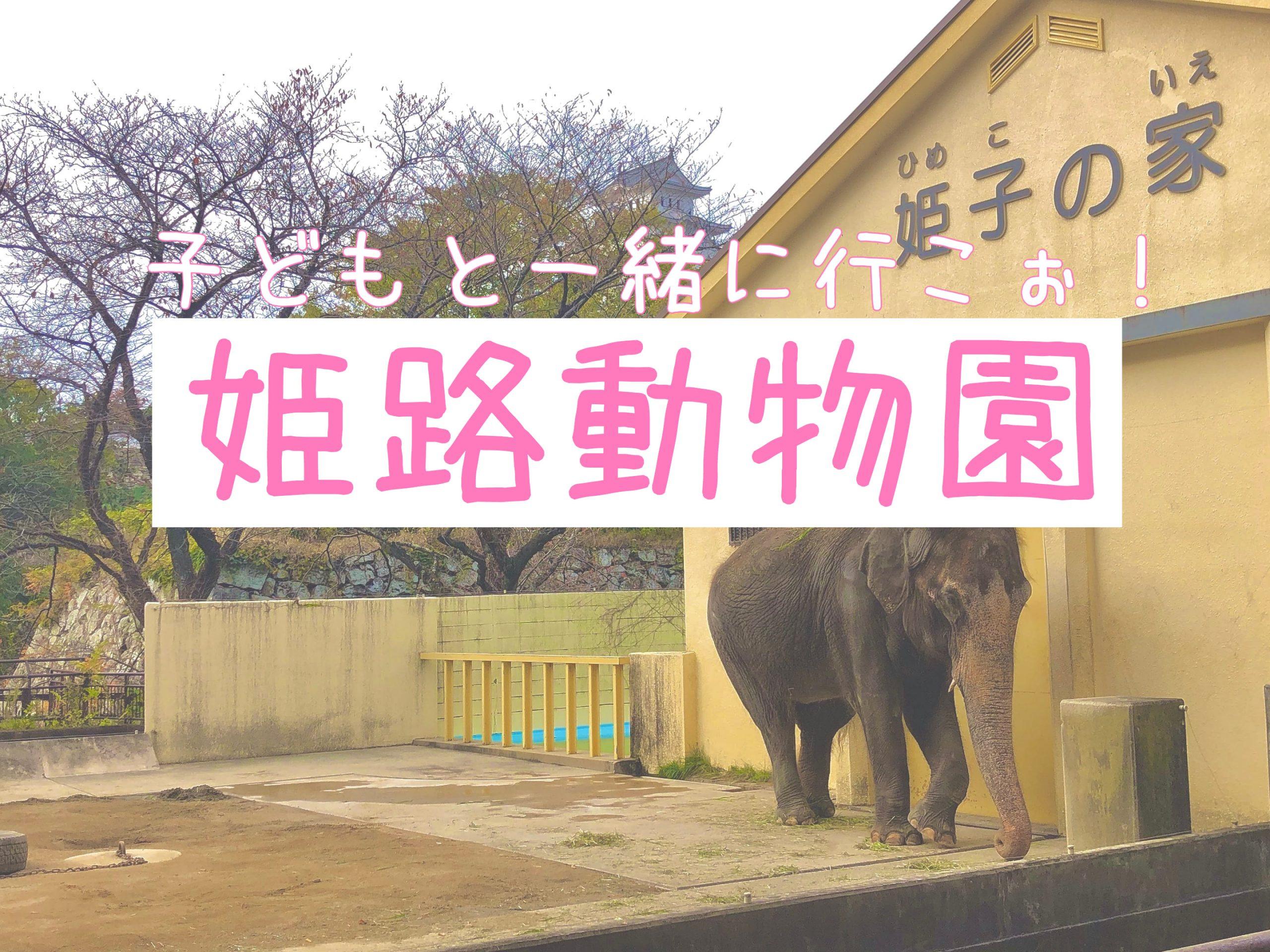 動物園アイキャッチ