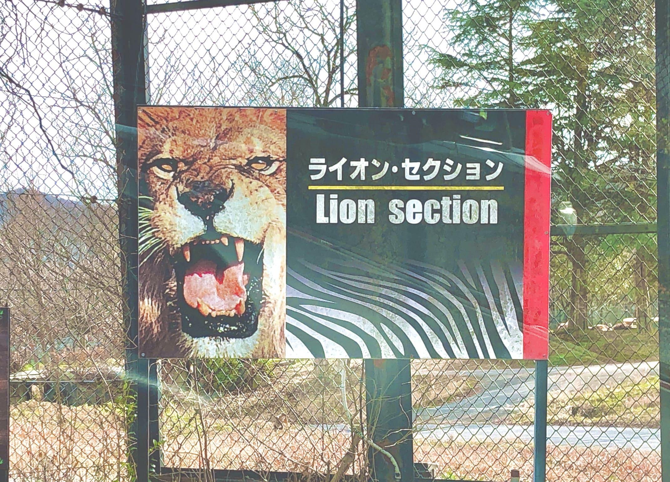 ライオン・セクション